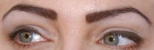 Angelina Jolie Eyebrows