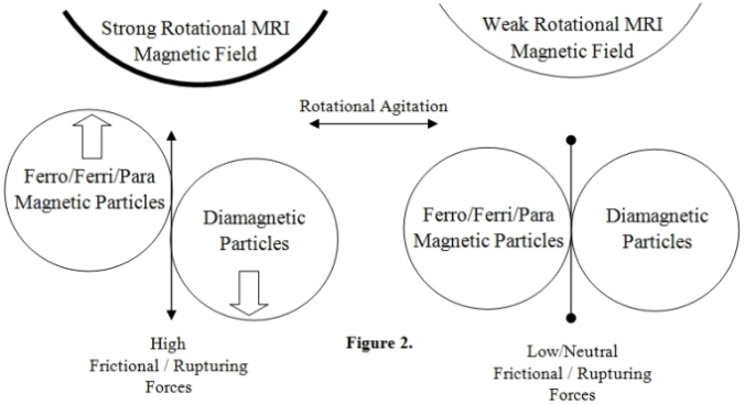 Diametric Particle Agitation Hypothesis